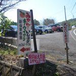 新保観光農園の駐車場